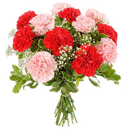 Гвоздики цветы москва купить подарок мужчине на 48 лет стрелец