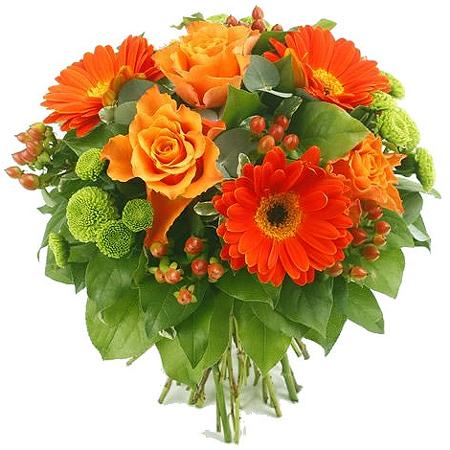 Купить хризантемы цветы