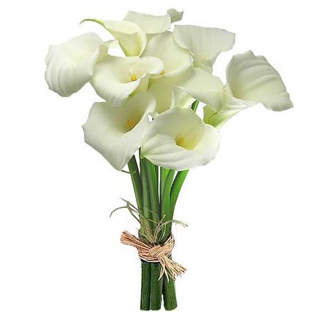цветы фото букеты каллы