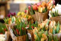 """Хотите купить цветы в Липецке? Приходите в салон """"Цветы Эль""""! У нас низкие цены на свежие цветы"""