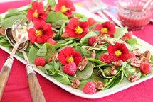 Весеннее меню разнообразят цветы!